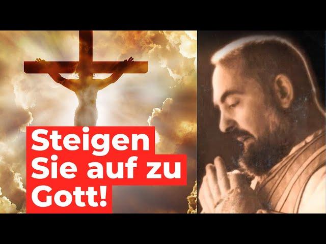 Im Gebet kommst Du Gott näher, und Gott kommt Dir näher. - Pater Pio