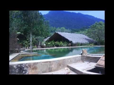 SRI LANKAN HOLIDAYS – SRI LANKA DISCOVERY TOURS (TRUSTED DMC IN SRI LANKA)