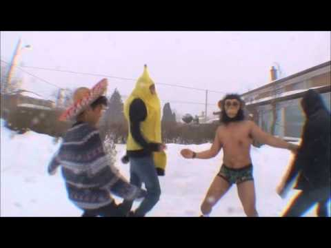 ★  The Harlem Shake - TOP 10 FUNNIEST ★