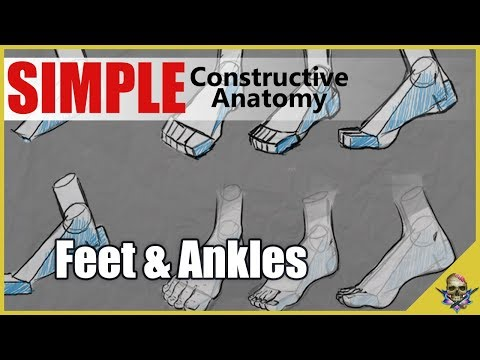 How to Draw FEET - Simplified Constructive Anatomy - Art Tutorial