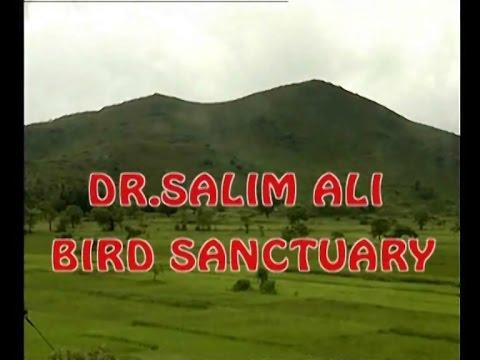 Bird Sanctury