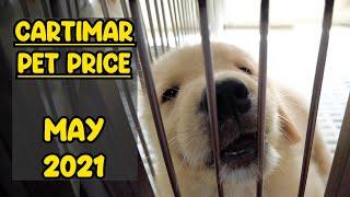 CARTIMAR Pet Price MAY 2021 LATEST Update (Bully, Golden Retriever, Akita, French Bulldog & More)