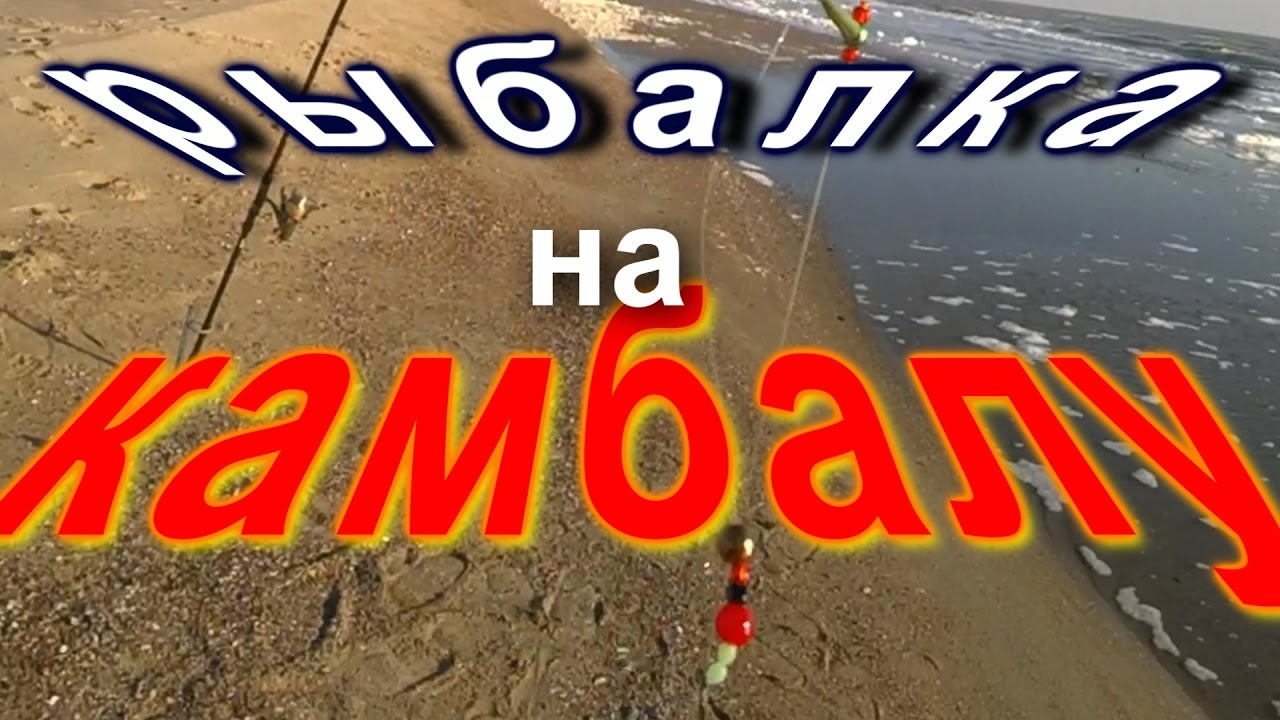 морская рыбалка на камбалу /снасти/наживка/