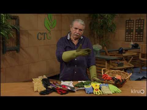 Best Garden Gloves  John Dromgoole  Central Texas Gardener