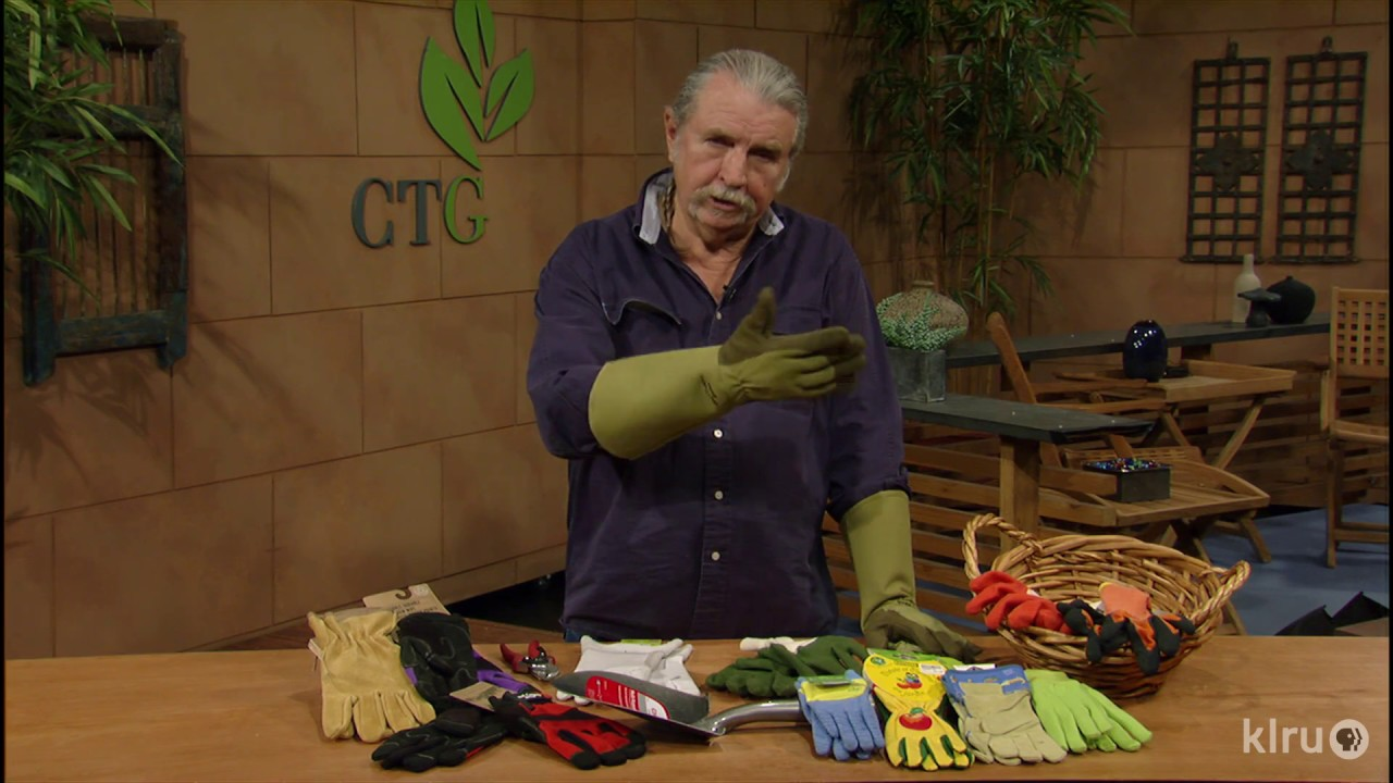 Best garden gloves |John Dromgoole |Central Texas Gardener - YouTube