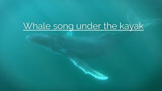 Whale song under the Kayak - So Loud!