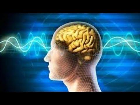 Энцефалопатия - виды, симптомы, лечение