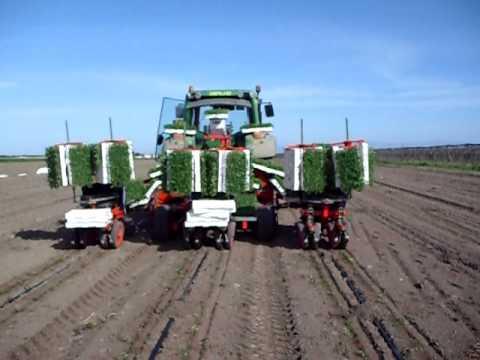 trapianto pomodori con autotrac ready youtube