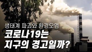 코로나19, 지구의 경고 - 생태계 파괴와 환경오염, 기후위기가 불러온 재앙일까? [다큐S프라임] / YTN 사이언스