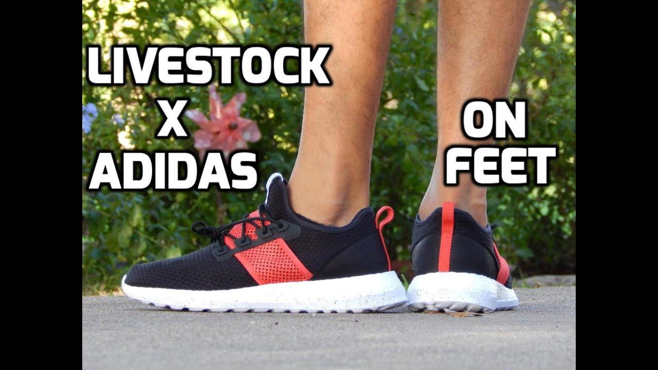 0c31381a0 Adidas X Live Stock Consortium Zg PureBoost On-Feet - YouTube