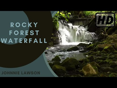 Relaxing Forest Waterfall Nature Sounds-Birds Singing-Natural Calming Sound of Water for Sleeping