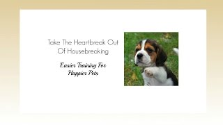 House Training A Beagle Puppy How To Potty Train Your Beagle Puppy Dog Beagle Potty Training Source