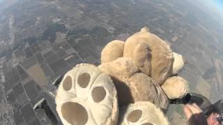Teds AFF Skydive Lodi