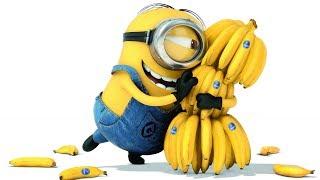 В чем польза бананов, какие из них полезнее и может ли быть вред для здоровья организма?