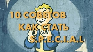 Секреты Fallout 4 10 советов чтобы стать S.P.E.C.I.A.L