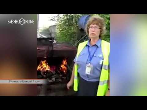 В казанском аэропорту сожгли баранину из Узбекистана