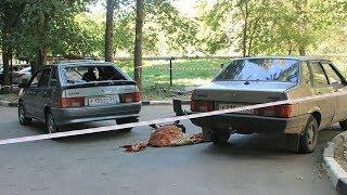 Спор двух братьев из-за гаража в Саратове закончился жестоким убийством