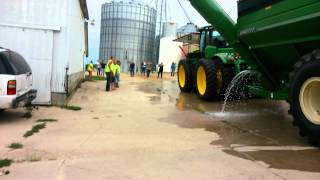 ALS ice bucket challenge country style.