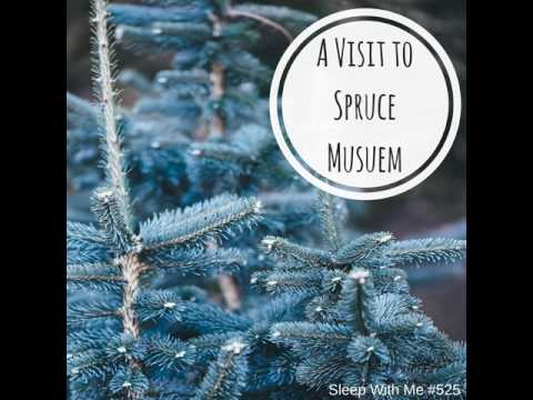 "Sleep Trouble Solved with Bedtime Story for grownups- ""Spruce Museum"" 