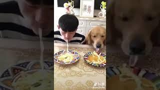 Дебил и собака
