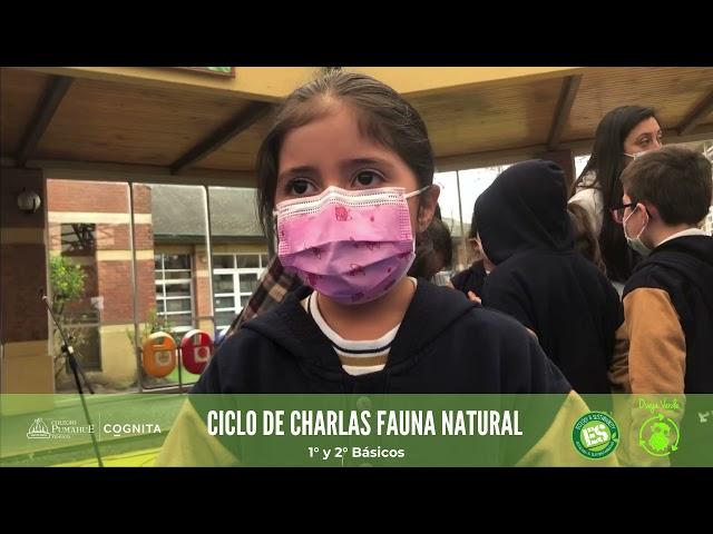 Charlas Medioambientales en Pumahue Temuco