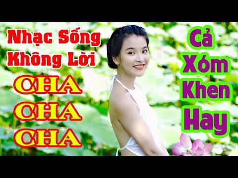 nhac song cha cha khong loi tại Xemloibaihat.com