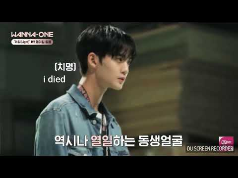 BAE JINYOUNG PLAYING WITH A CAT (ENG SUBS)