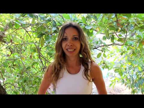 Testimonials for Reiki & Meditation course Goa by Fanny France