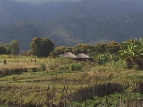 Integrated agriculture-aquaculture (IAA) in Malawi