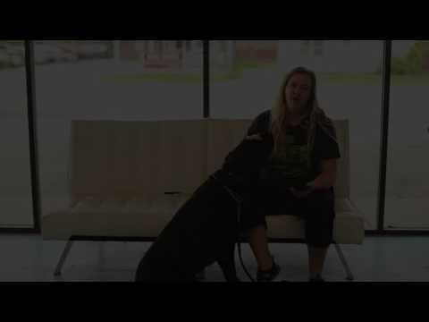Service Dogs- How to Train an Alert- Salt Lake City Service Dogs