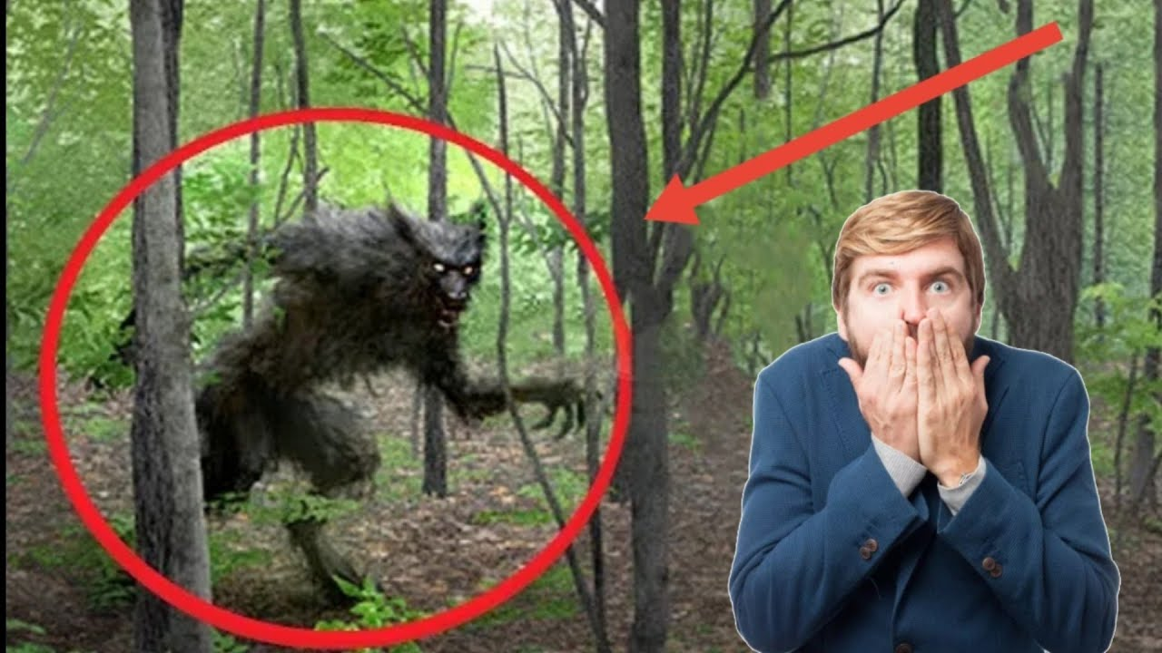 Download TOP 5 REAL WEREWOLVES CAUGHT ON CAMERA