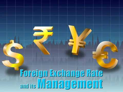 Foreign Exchange Rate And Its Management Ikenedu Cbse