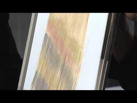 Davines: COLOR Show 2013