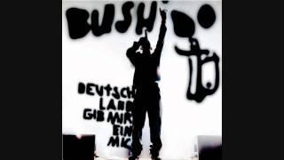 Bushido - Ghettorap hin, Ghettorap her (Live) (HD)