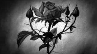 ▓▓ omala - relicon ▓▓