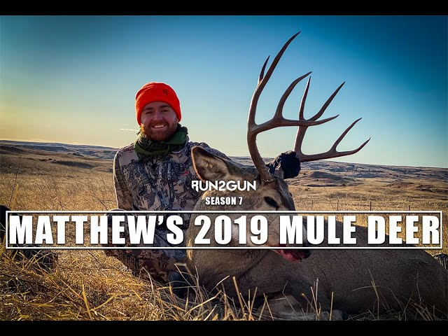 Matthew's 2019 Mule Deer