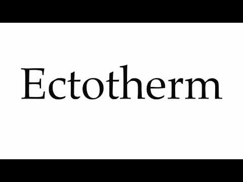 How to Pronounce Ectotherm