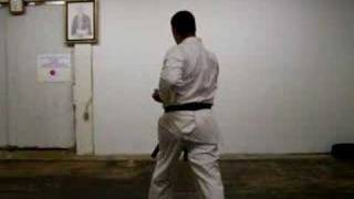 Heian Nidan kata karate shotokan Martin Silva