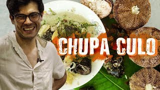 The Best Food in Zamboanga (Catch and Cook Snails and Sea Urchin)