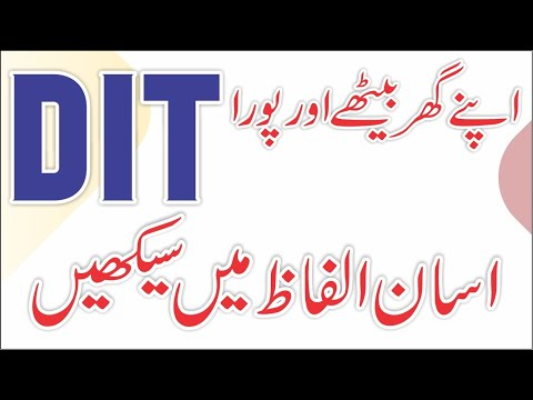 DIT / Introduction to DIT / IT lesson # 1