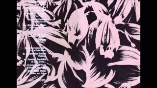 Shiny Black Mater - La Pelote Du Chat - A5 - Various - Circuit D