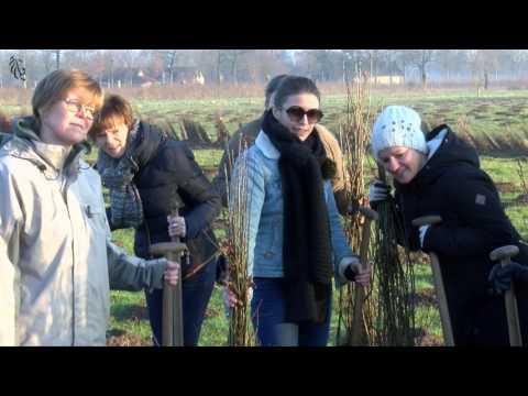 7775 boompjes voor het Gentse Parkbos