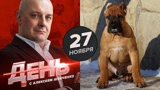 Капризов решил завести собаку. День с Алексеем Шевченко 27 ноября