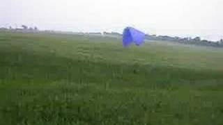 PPG low flying through corn fields