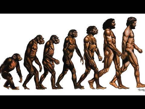 collapse of Darwinism & the theory of Evolution