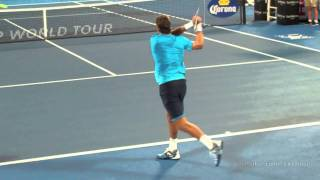Juan Martin Del Potro - Backhands in Slow Motion