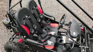 Mini Monster Double Buggy - 150cc Kids Buggy