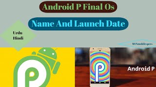 Android P Official Os Update Release Date And Name | MSNmobilespecs