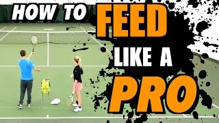 How To Feed Like a Pro