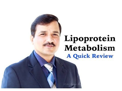 Lipoprotein Metabolism -  A Quick Review